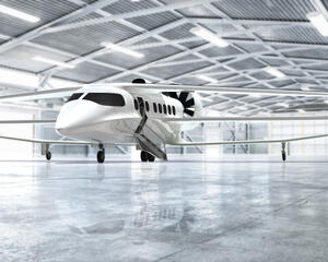 Bio Electric Hybrid Aircraft