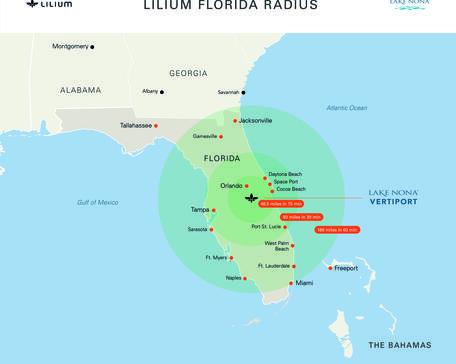 Lilium Florida